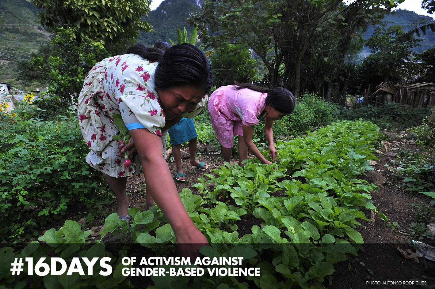 Land Ownership Action Against Hunger