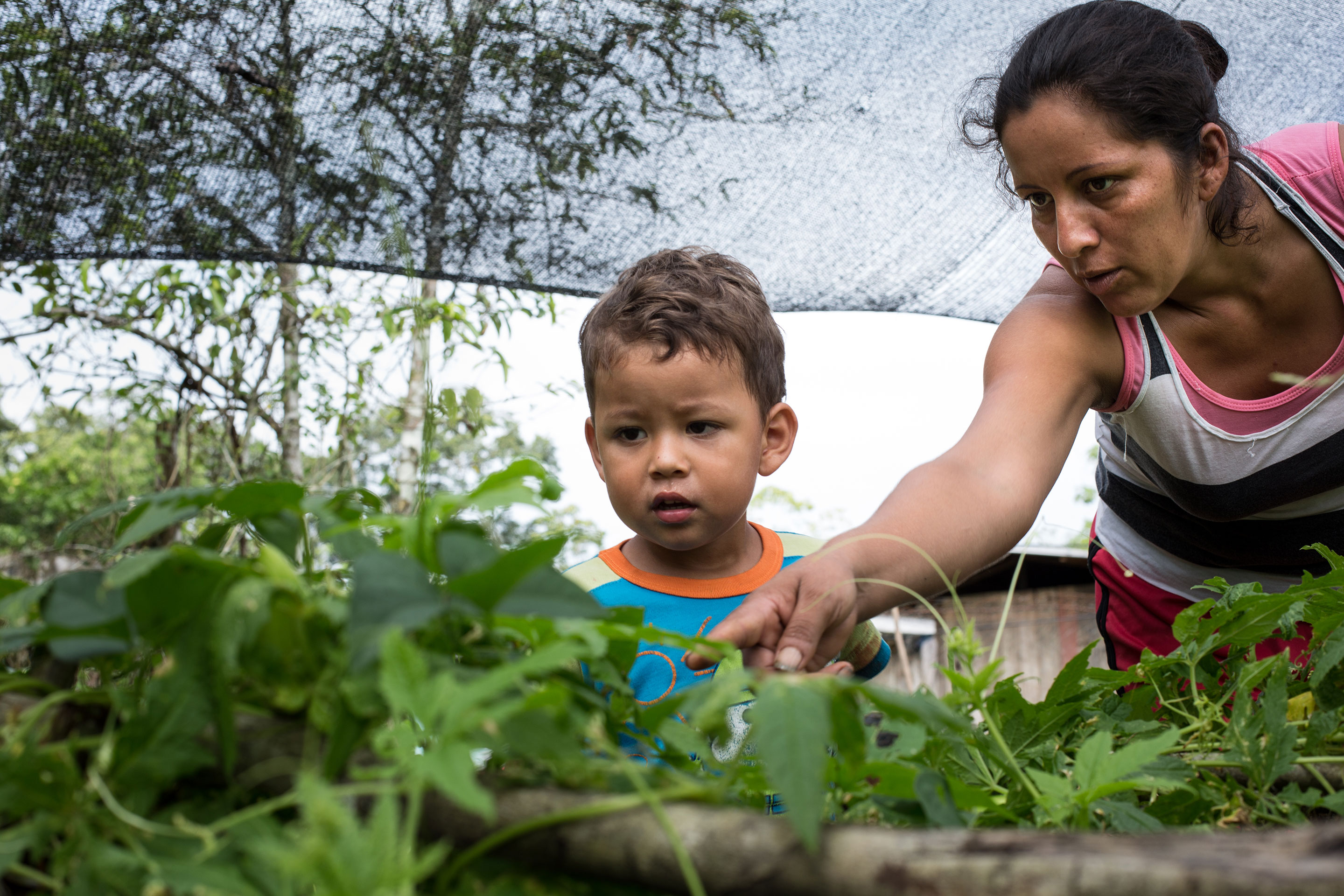 28 Times We Used Gardens In The Fight Against Malnutrition