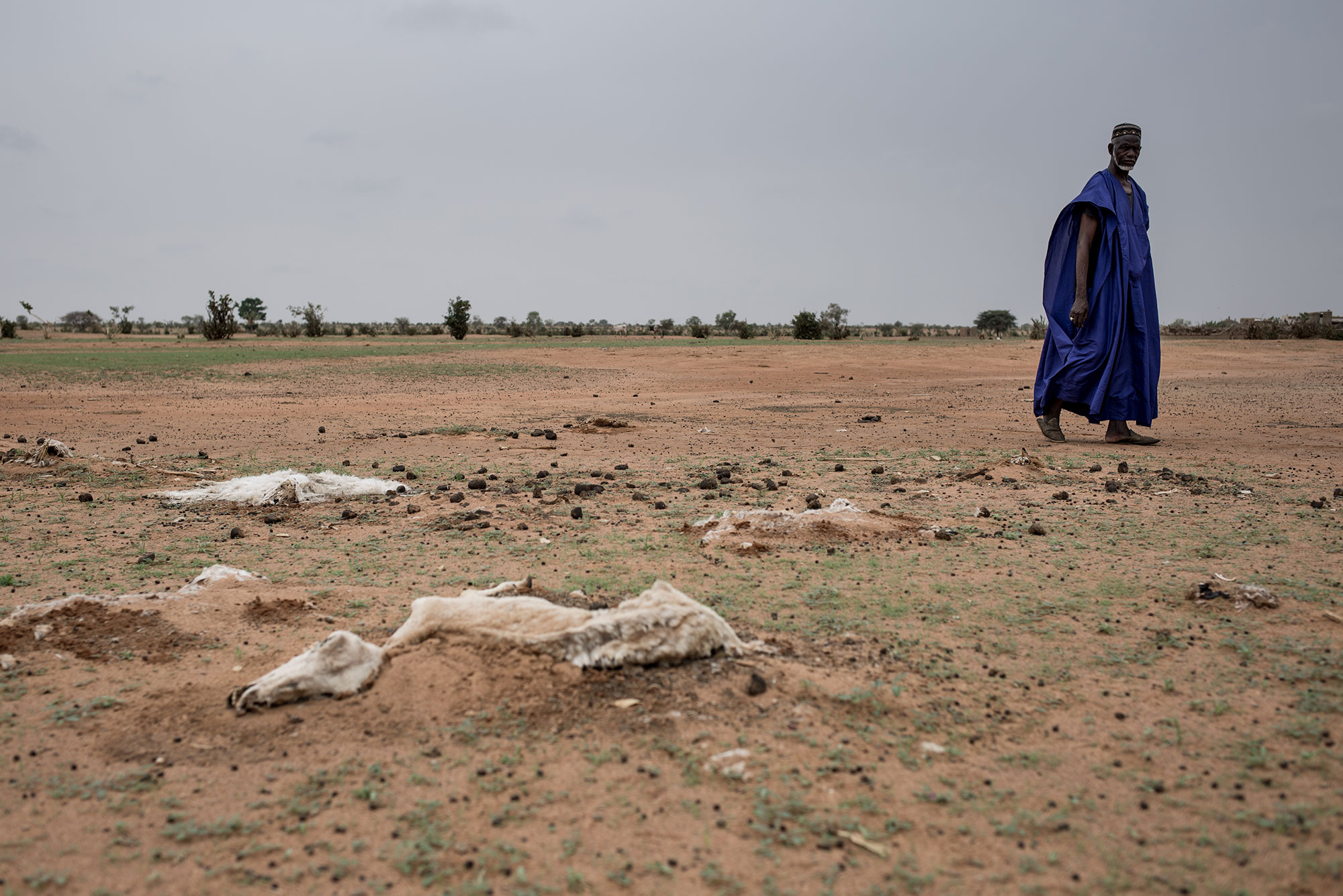 Drought and Food Insecurity Action Against Hunger