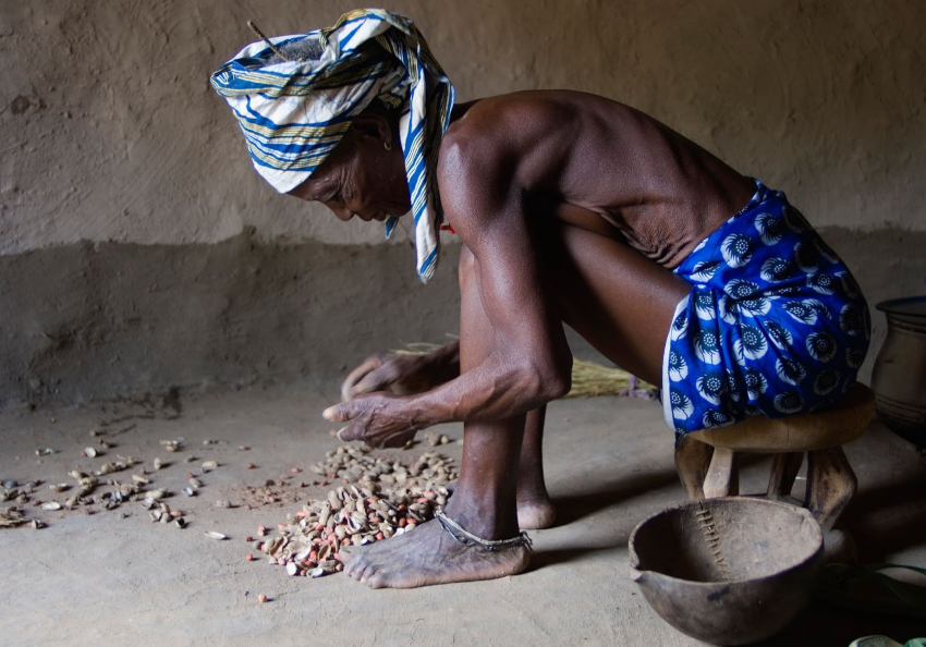 Hunger Season Sahel - Action Against Hunger