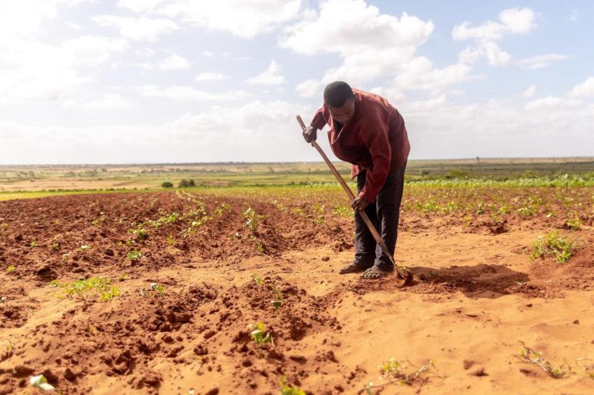 Lean Season Madagascar - Action Against Hunger